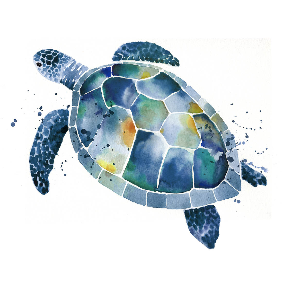 Sara Berrenson Illustration watercolor sea turtle