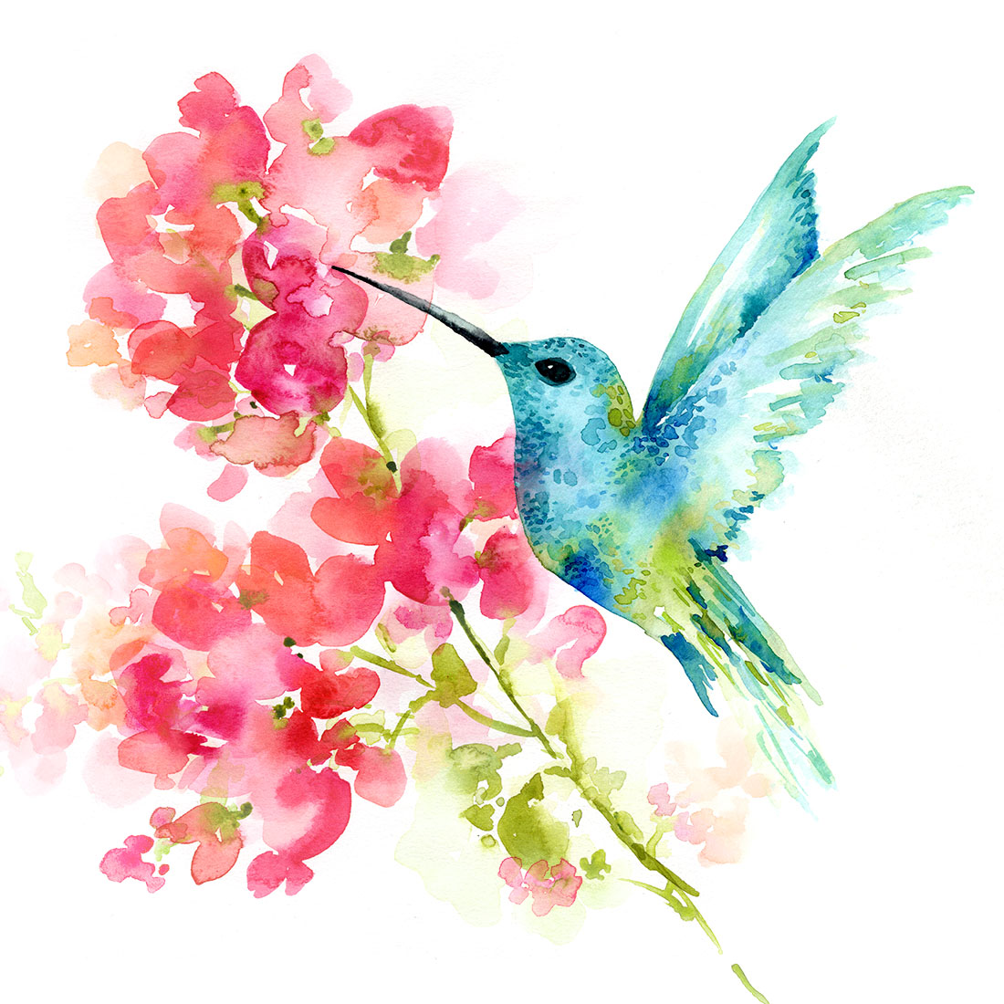 Sara Berrenson Illustration hummingbird and flower