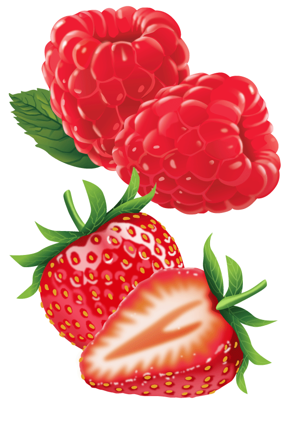 Pam Wall Illustration Strawberries and Raspberries